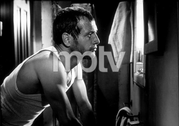 "Paul Newman in ""Harper,""1966. - Image 3477_0057"