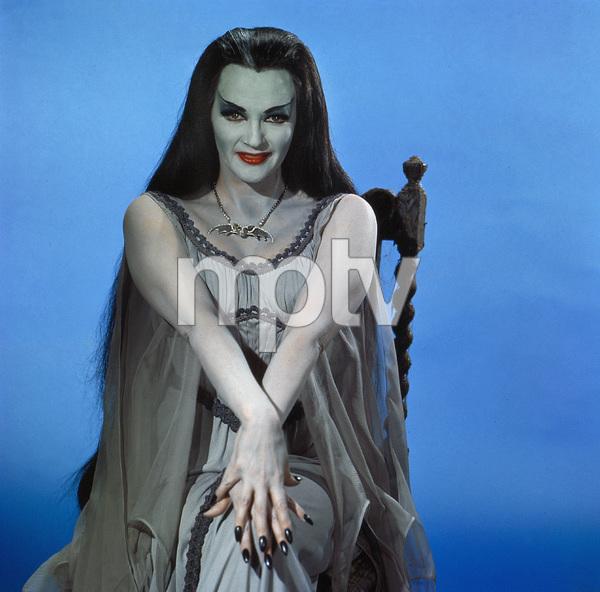 """The Munsters""Yvonne De Carlocirca 1965** I.V. - Image 3600_0242"