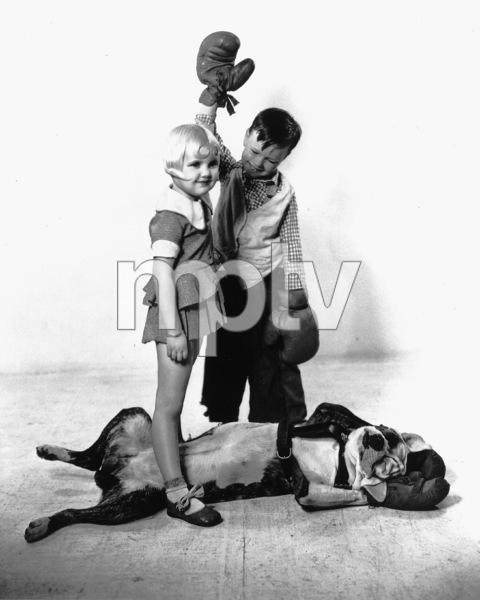 """Our Gang""Pete the Dogc. 1935**R.C. - Image 3636_0033"