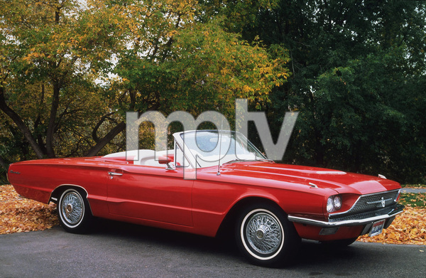 Car Category1966 Ford Thunderbird ConvertibleOwner Bob Peterson © 1995 Glenn EmbreeMPTV - Image 3846_0431