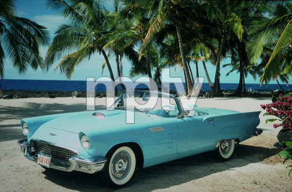 Car Category1957 Ford ThunderbirdOwner Dawn Bartsch © 1989 Glenn EmbreeMPTV - Image 3846_0439