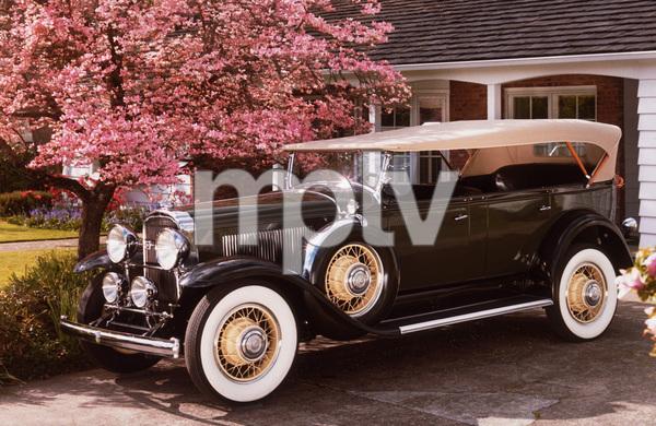 "Car Category1931 Buick 8-95 7 Passenger Touring Owner Barbara & ""Bud"" Rex © 1987 Glenn EmbreeMPTV - Image 3846_0449"