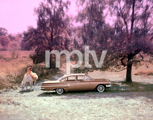 Cars1960 Chevrolet Bel Air © 2000 Mark Shaw - Image 3846_0562