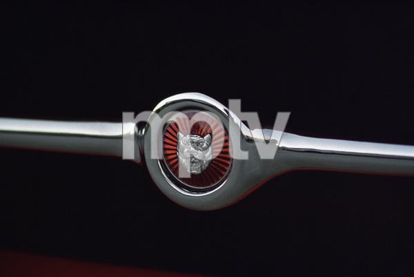 Cars1965 Jaguar 4.2. E-Type © 2005 Ron Avery - Image 3846_1505
