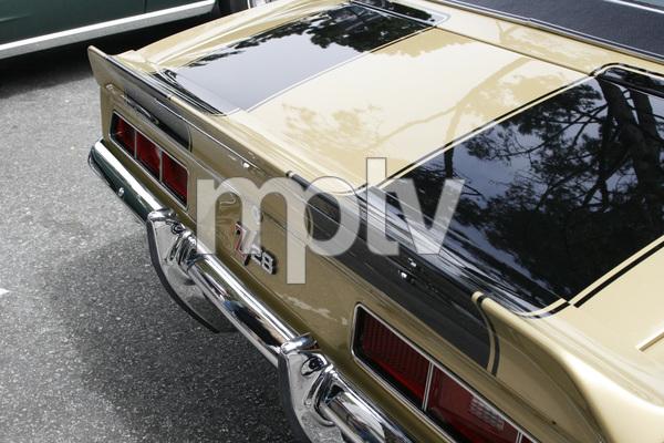 CarsChevrolet Camaro Z282011© 2011 Toni Avery - Image 3846_2030