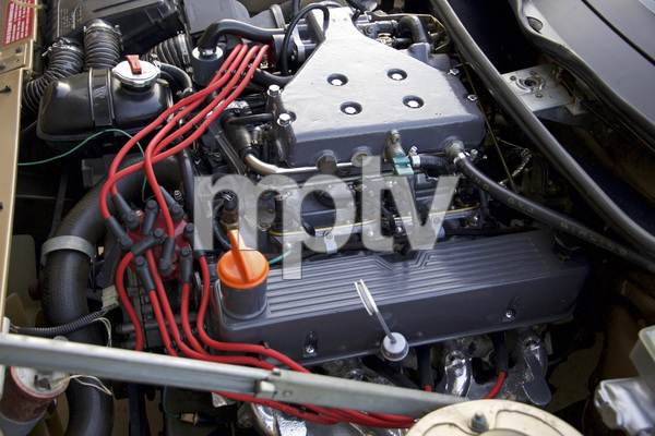 Cars1980 Triumph TR 8© 2018 Ron Avery - Image 3846_2232