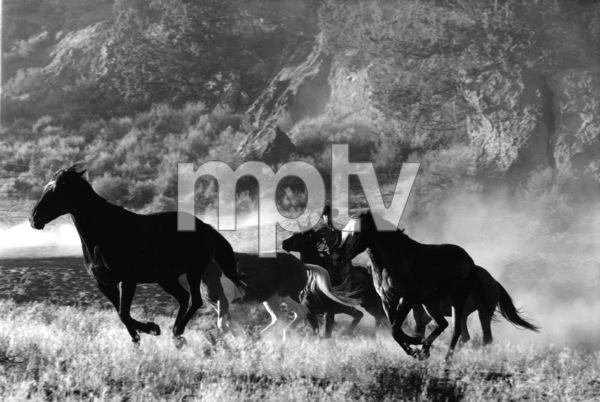 WesternsHorse Ranch in Bend, OregonSeptember 2000 © 2000 Gene Trindl - Image 3888_0013