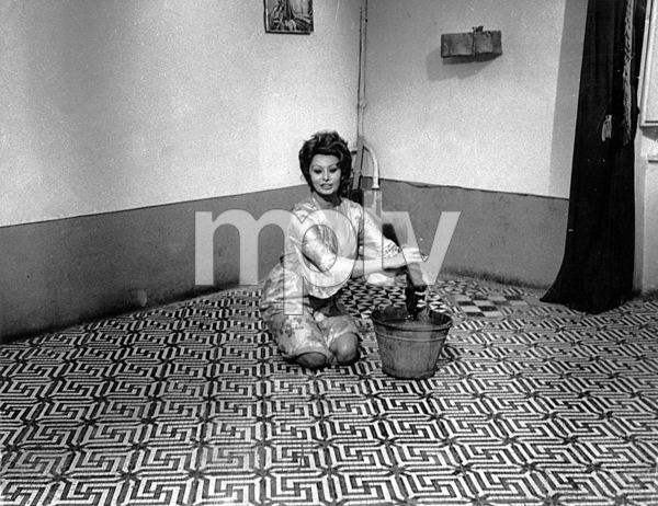 """Marriage-Italian Style""Sophia Loren1964 - Image 3906_0001"