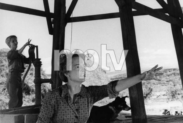 """The Proud Rebel""David Ladd, Olivia de Havilland1958© 1978 Bill Avery - Image 4572_0011"