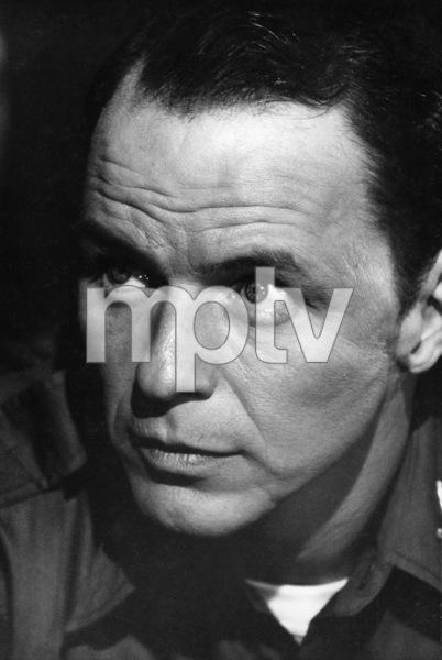 """Kings Go Forth""Frank Sinatra1958 MGM © 1978 Bill Avery - Image 4573_0001"