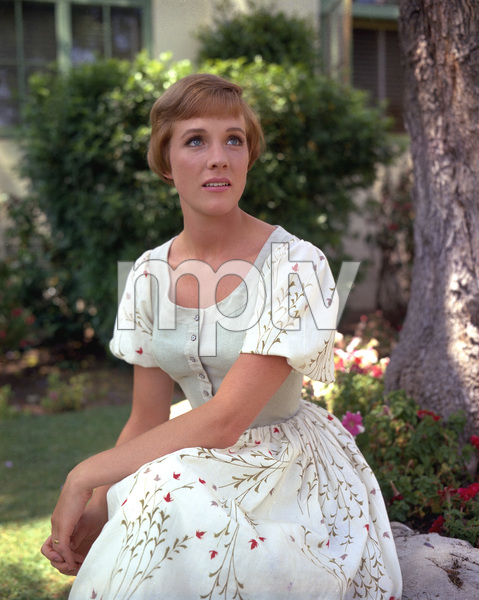 """The Sound of Music""Julie Andrews1964 Twentieth Century Fox**I.V. - Image 5370_0166"