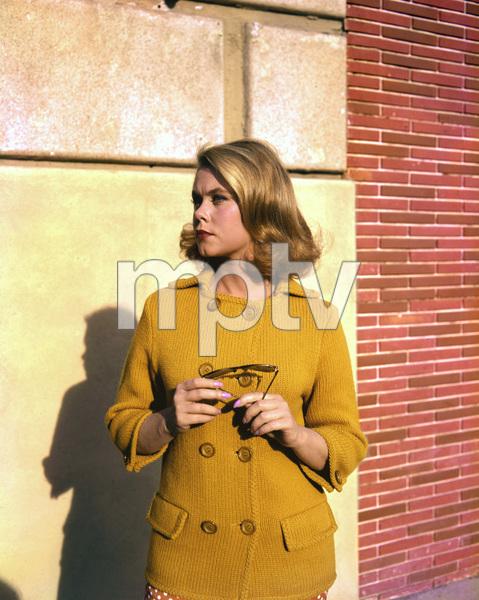"""""""Bewitched""""Elizabeth Montgomeryc. 1964 ABC**I.V. - Image 5406_0056"""