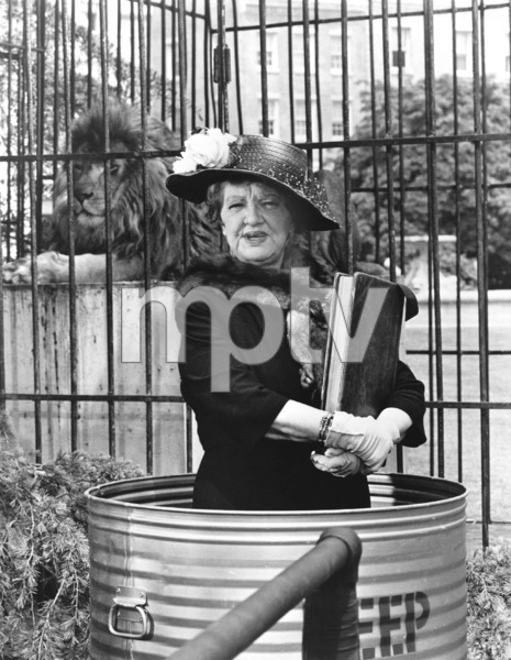 """Bewitched""Marion Lornec. 1967 ABC**I.V. - Image 5406_0085"