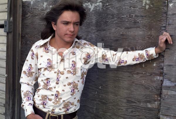 """The Partridge Family""David Cassidycirca 1970s** H.L. - Image 5418_0069"
