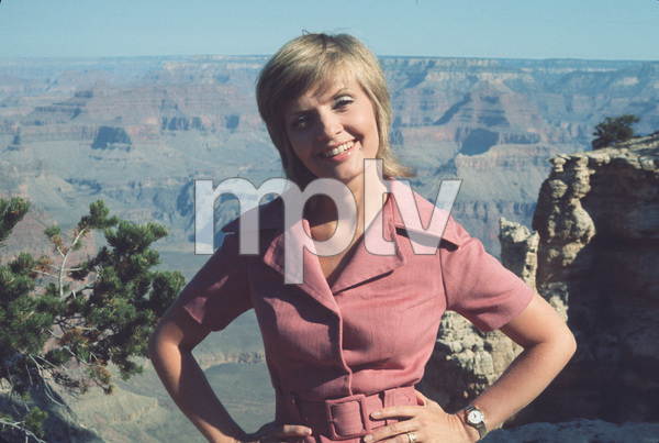 """Brady Bunch,The""Florence HendersonCirca 1971 **H. - Image 5421_0043"