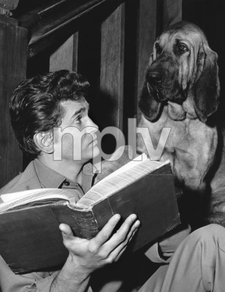 """""""Bonanza""""Michael Landon in """"Hound Dog"""" 1965**I.V. - Image 5424_59"""
