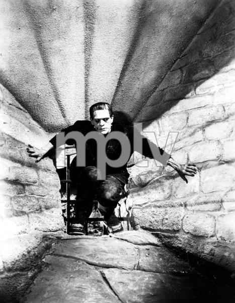 """""""Frankenstein"""" Boris Karloff1931 UniversalPhoto by Sherman Clark  **I.V. - Image 5577_0049"""