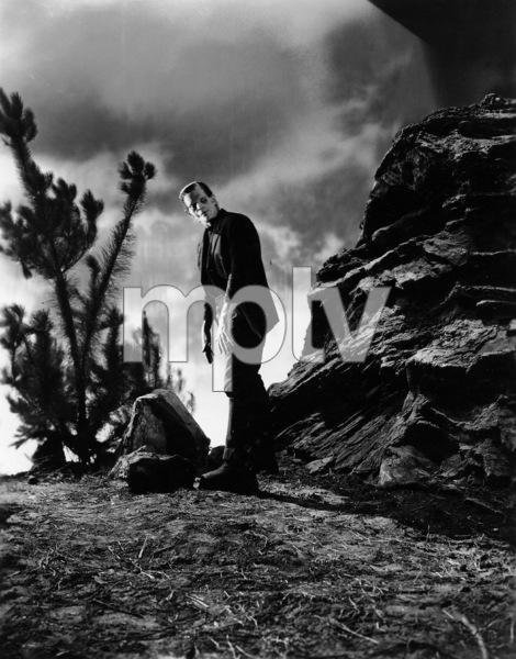 """Frankenstein"" Boris Karloff1931 Universal **I.V. - Image 5577_0050"