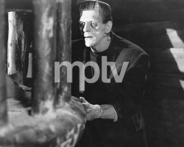"""Frankenstein""Boris Karloff1931 Universal**I.V. - Image 5577_0060"