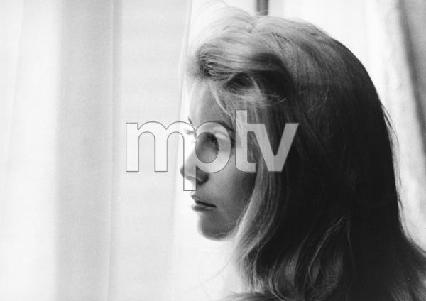 Catherine Deneuvecirca 1967**I.V. - Image 5638_0013