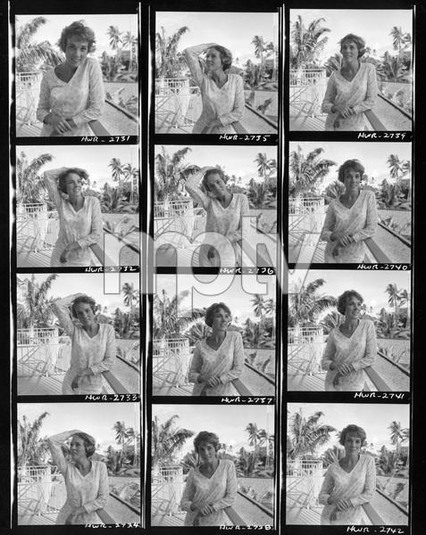 Julie Andrews1966Photo by Al St. Hilaire - Image 5722_0100
