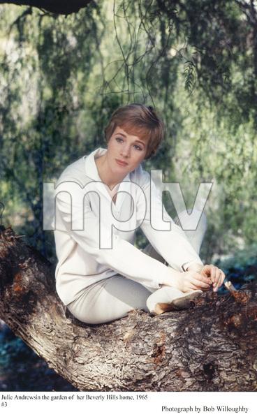 Julie Andrewsin her Beverly Hills garden, 1965. © 1978 Bob Willoughby - Image 5722_0111