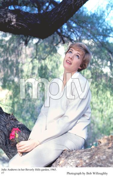 Julie Andrewsin her Beverly Hills garden, 1965. © 1978 Bob Willoughby - Image 5722_0159