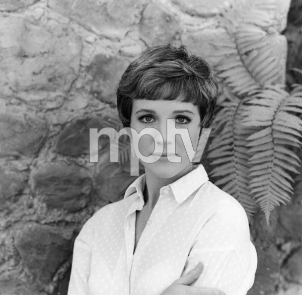 Julie Andrews1966** I.V. - Image 5722_0176
