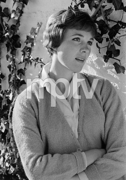 Julie Andrews1966 © 1978 Gene Trindl - Image 5722_0186