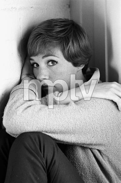 Julie Andrews1966 © 1978 Gene Trindl - Image 5722_0188