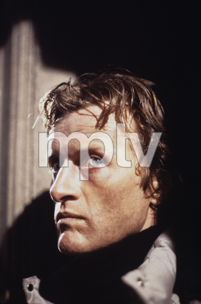 """""""Nighthawks""""Rutger Hauer1981 Universal Pictures © 1981 Bob Willoughby - Image 5739_0021"""