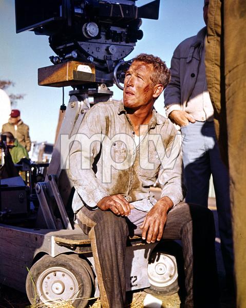 """Cool Hand Luke""Paul Newman1967 Warner Brothers**I.V. - Image 5788_0006"