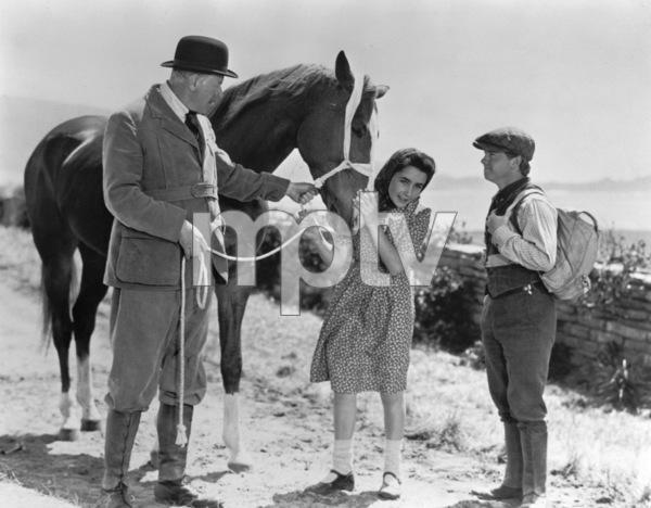 """National Velvet""Elizabeth Taylor, Reginald Owen and Mickey Rooney1945 MGM**R.C.MPTV - Image 6019_0009"