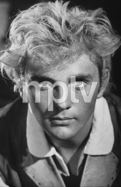 """""""Billy Budd""""Terence Stamp1962 Anglo/Allied**I.V. - Image 6255_0003"""