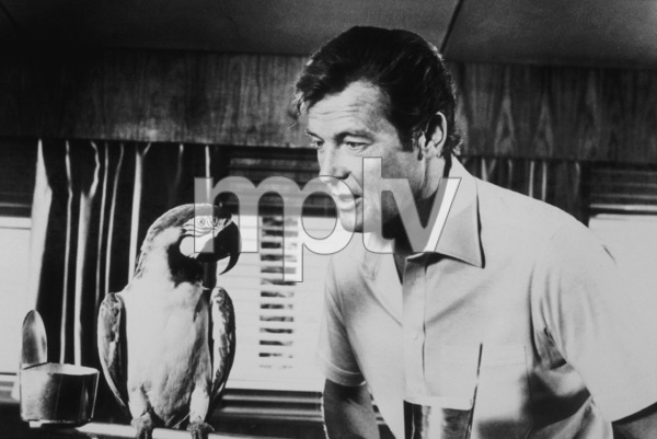 """""""For Your Eyes Only,"""" Roger Moore1981 MGM / MPTV - Image 6419_0029"""