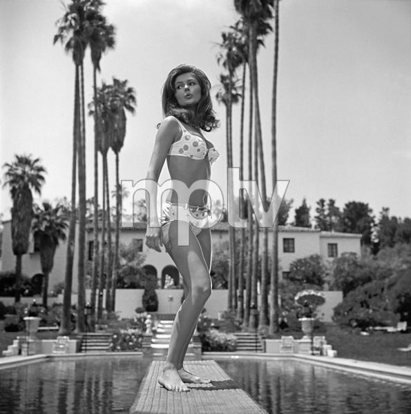 """Pamela Tiffin during the making of """"Harper""""1965© 1978 David Sutton - Image 7211_0014b"""