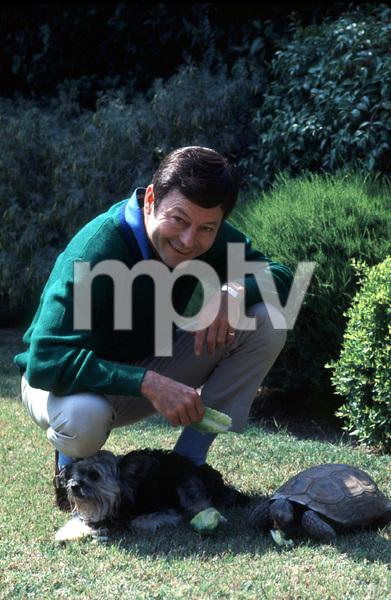 7438-6 DeFOEREST KELLEYAT HOME IN THE SAN FERNANDO VALLEY CA.JUN 1968 © 1978 GENE TRINDL / MPTV - Image 7438_6
