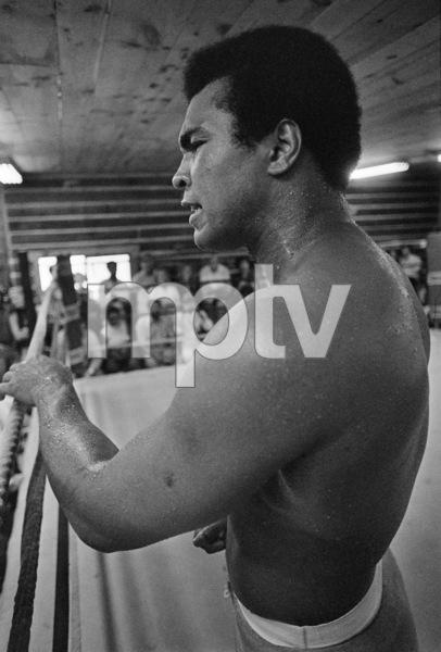Muhammad Ali1974© 1978 Peter Angelo Simon - Image 7683_0530