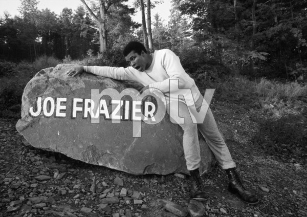 Muhammad Ali 1974 © 1978 Peter Angelo Simon - Image 7683_0638