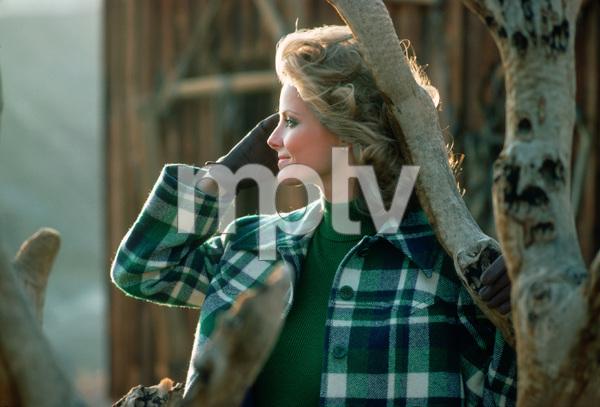 Cheryl Tiegs1975 © 1978 Sid Avery - Image 7887_0008