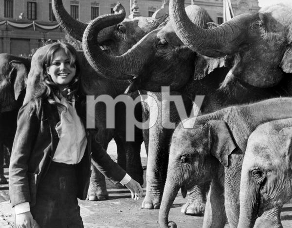 "Claudia Cardinale in ""Circus World""1964 - Image 7921_0010"