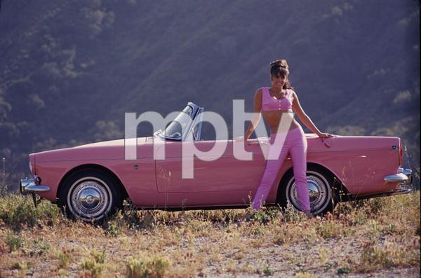 Jo Collins (Playboy magazine