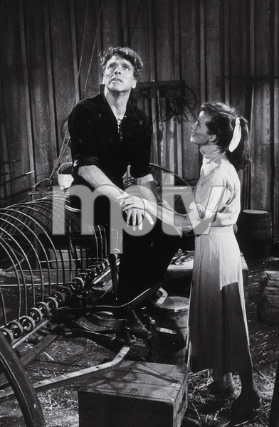 """The Rainmaker""Katharine Hepburn and Burt Lancaster 1956 Paramount © 1978 Bill Avery - Image 8293_0001"