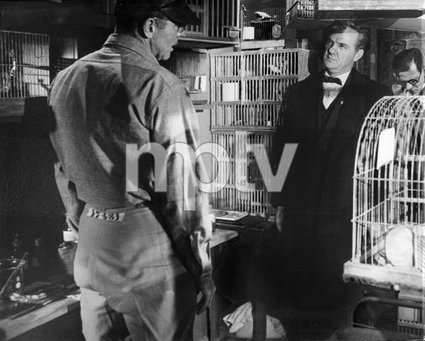"""Birdman of Alcatraz""Burt Lancaster, Karl Malden1962 UA - Image 8669_0001"