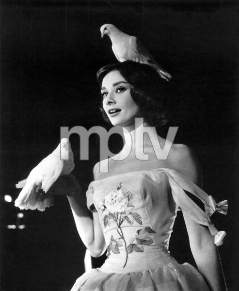 """Funny Face"" Audrey Hepburn 1956 Paramount **I.V. - Image 9111_0382"