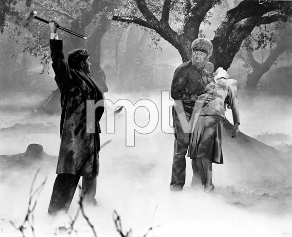 THE WOLFMAN, Lon Chaney Jr., Evelyn Ankers, Universal, I.V. - Image 9131_0007