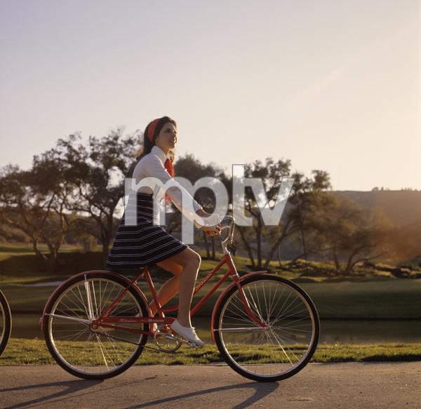 Bicycles (Schwinn)circa 1960s / Calabasas Park © 1978 Sid Avery - Image 9245_0019