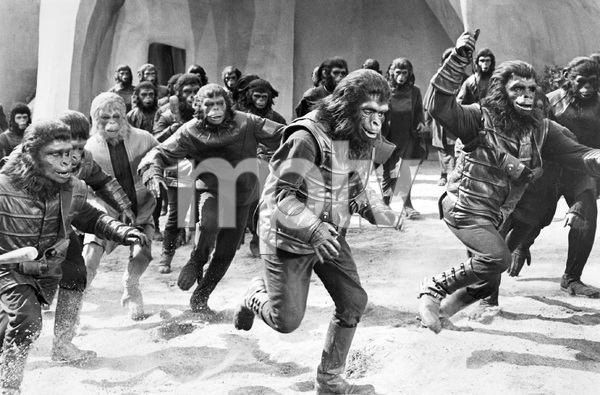 THE PLANET OF THE APES, TCF, 1968, I.V. - Image 9436_0071