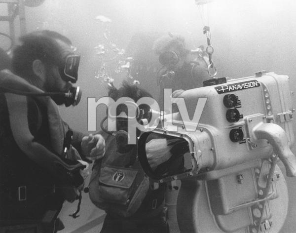 """""""Jaws""""Steven Speilberg 1974 Universal**I.V. - Image 9575_0023"""