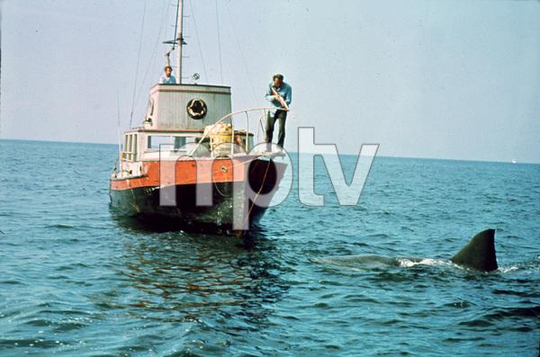 """Jaws""Richard Dreyfuss, Robert Shaw1975 Universal Pictures - Image 9575_0055"